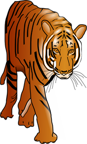 Prowling Tiger PNG, SVG Clip art for Web.