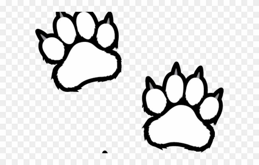 Scratches Clipart Tiger Paw.