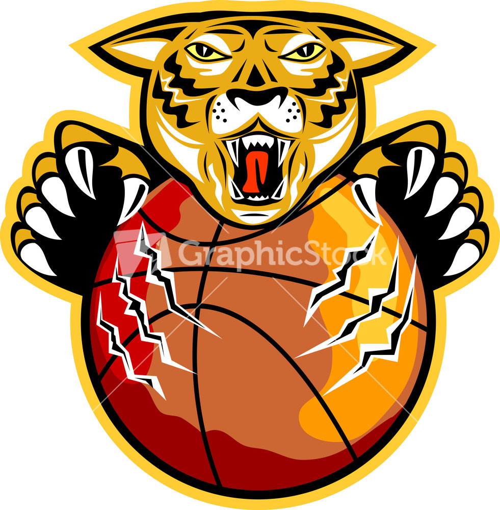Tiger Basketball Ball Claws.