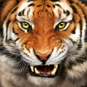 PNG Tiger Face Transparent Tiger Face.PNG Images..