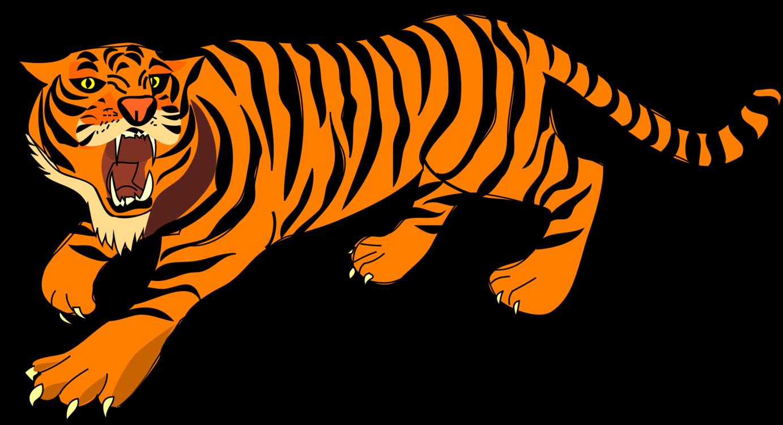 Carnivoran,Lion,Big Cats Clipart.