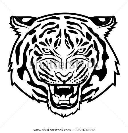 white tiger roar drawing 558.