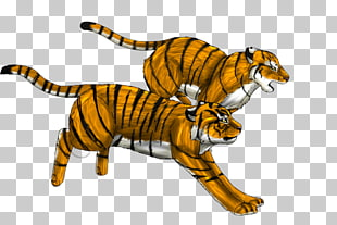 70 tiger Running PNG cliparts for free download.
