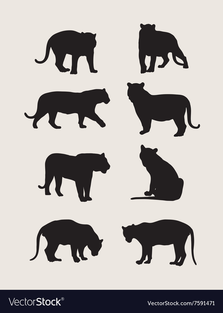 Tiger Silhouettes.