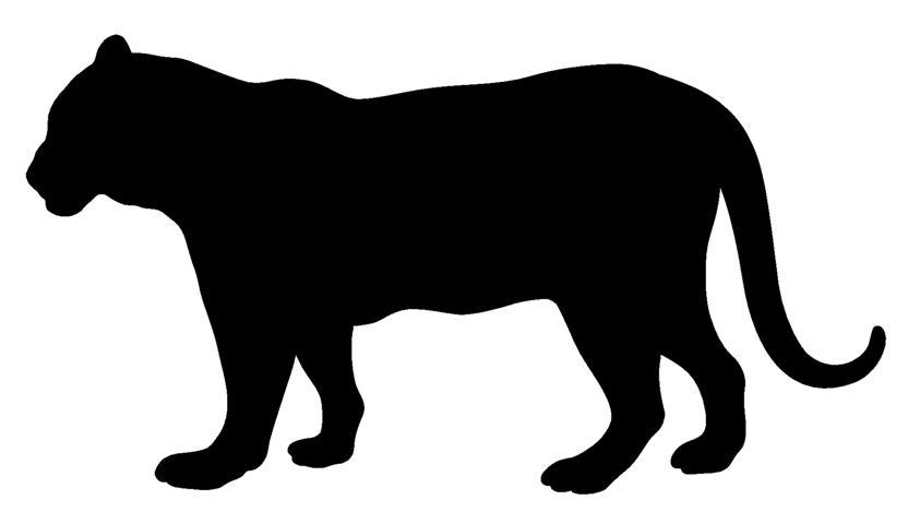 Tiger Silhouette.
