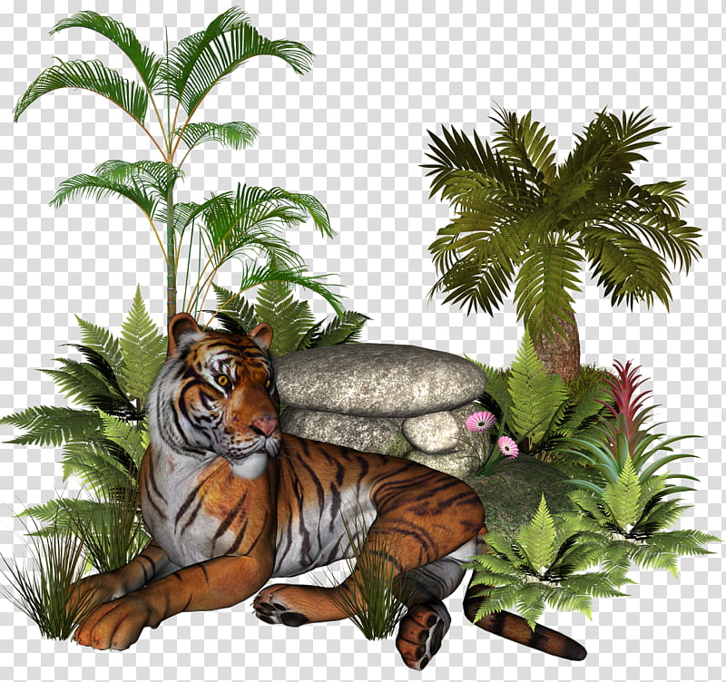 Plants and rocks , brown tiger sitting front of palm plant.