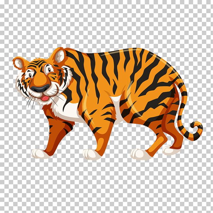 Tiger Drawing , cartoon tiger PNG clipart.