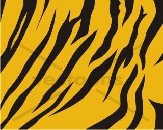 Wild Tiger Skin Pattern.