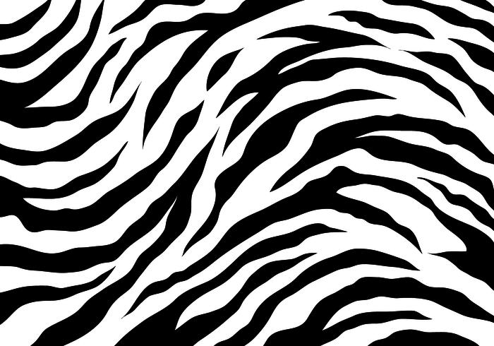 Tiger Stripes Png.