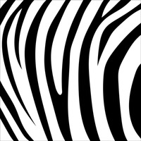 Tiger Stripes Clipart (99+ images in Collection) Page 3.