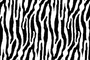 Tiger Stripes Png (107+ images in Collection) Page 2.