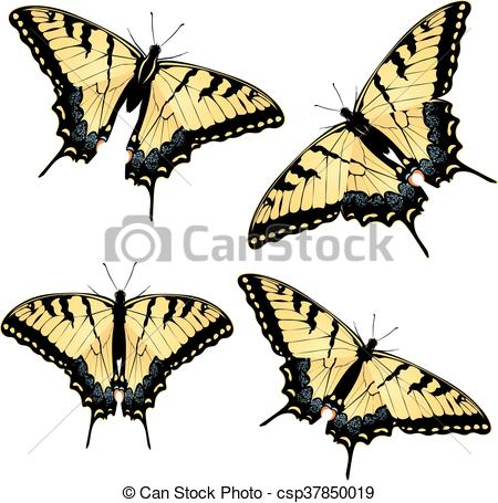Vector Clip Art of Tiger Swallowtail Butterfly.