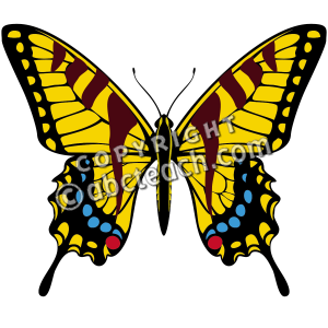 Gallery For > Clipart Tiger Swallowtail.