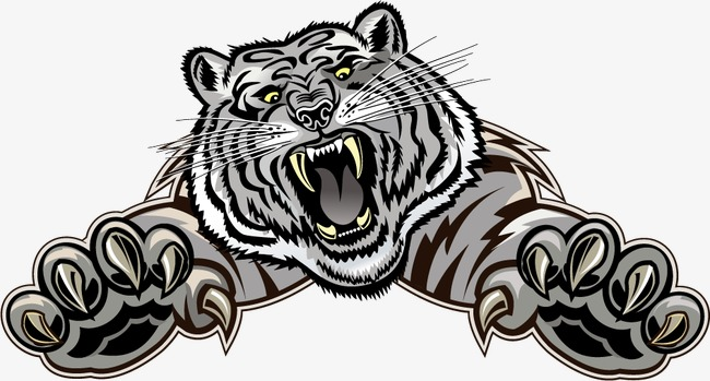 White Tiger Vector at GetDrawings.com.