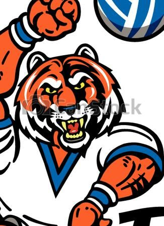 Vectors Illustration of tiger volleyball.