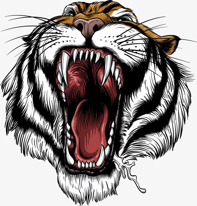 The Handrew Painting Tiger, Tiger Clipart, Siberian Tiger.