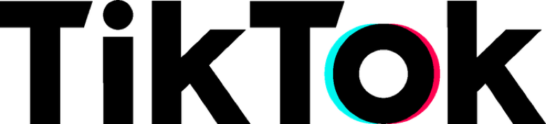 Tik Tok Text Logo transparent PNG.