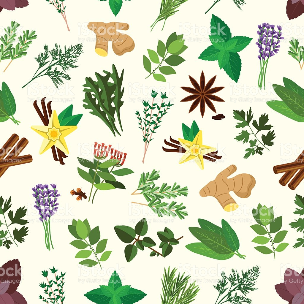 Fresh Spicy Herbs And Condiments Seamless Pattern stock vector art.
