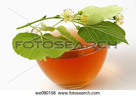 Pictures of Linden flower tea (Tilia platiphyllos or Tilia cordata.