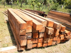 PNG Vitex Timber.