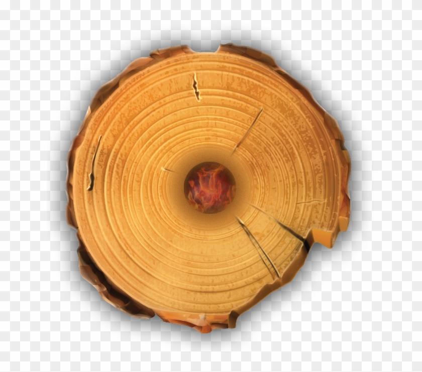 Timber Tote Log Top View.