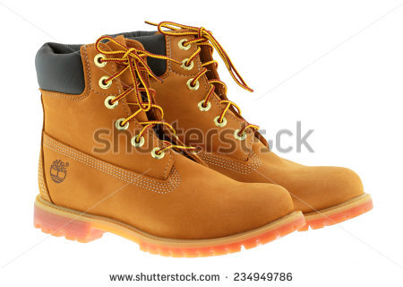 Timberland Stock Images, Royalty.