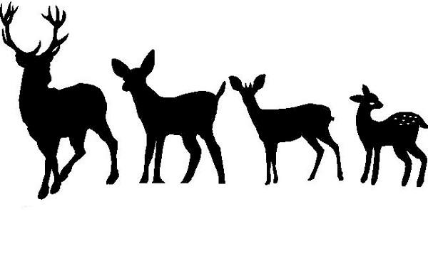 Deer Family Clipart.