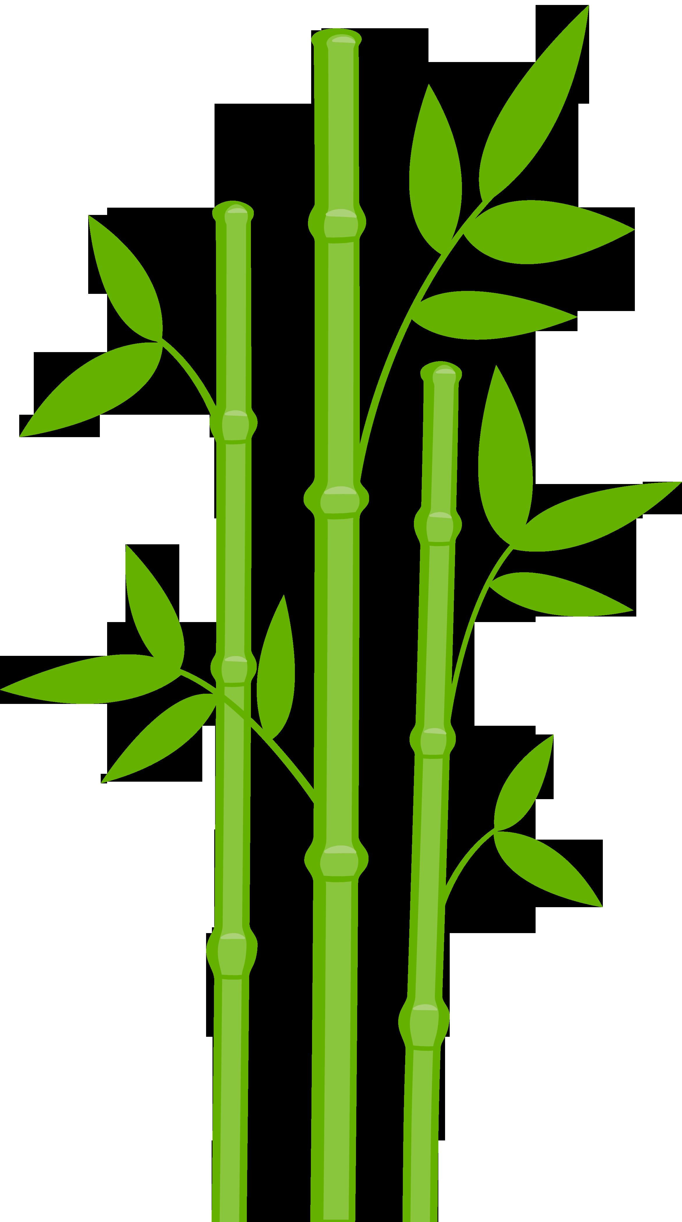 tiny bamboo clipart clipground