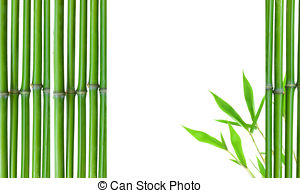 Stock Image of Border of Green small bamboo.