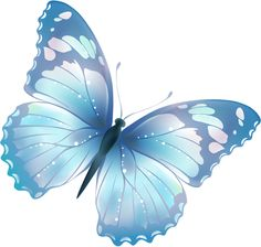 Tiny butterfly clipart.