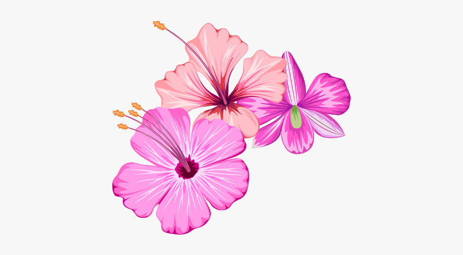 Small Fresh Flowers Flower Summer Free Transparent.