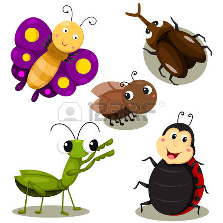 1,053 Tiny Insect Stock Vector Illustration And Royalty Free Tiny.