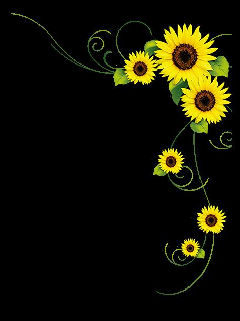 Sunflower Frame.