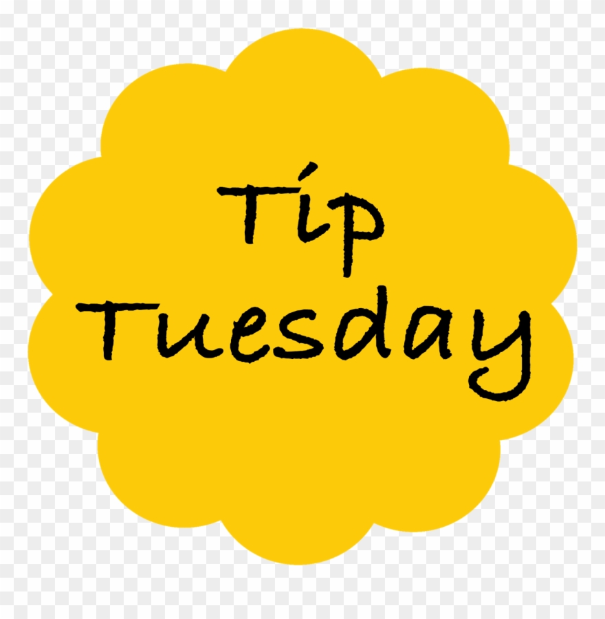 Tuesday Tip Of The Week Kidzone Kids Child Care Center.