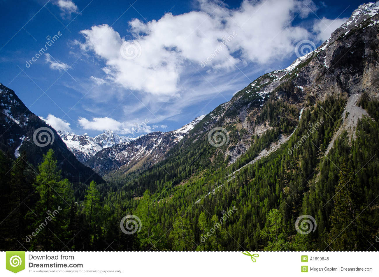 Tirano Stock Photos, Images, & Pictures.