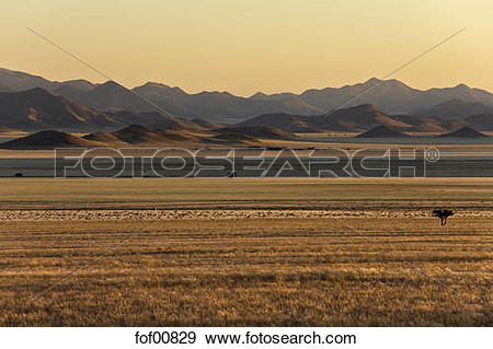 Stock Photograph of Africa, Namibia, Sunrise, Tiras Mountains and.