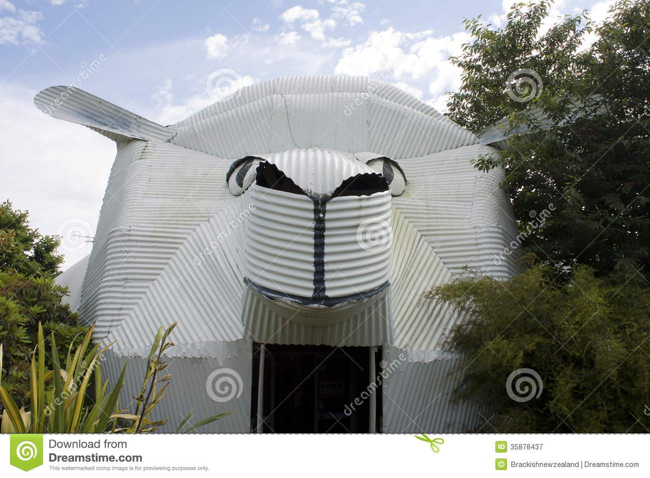 Corrugated Iron Big Sheep Royalty Free Stock Photography.