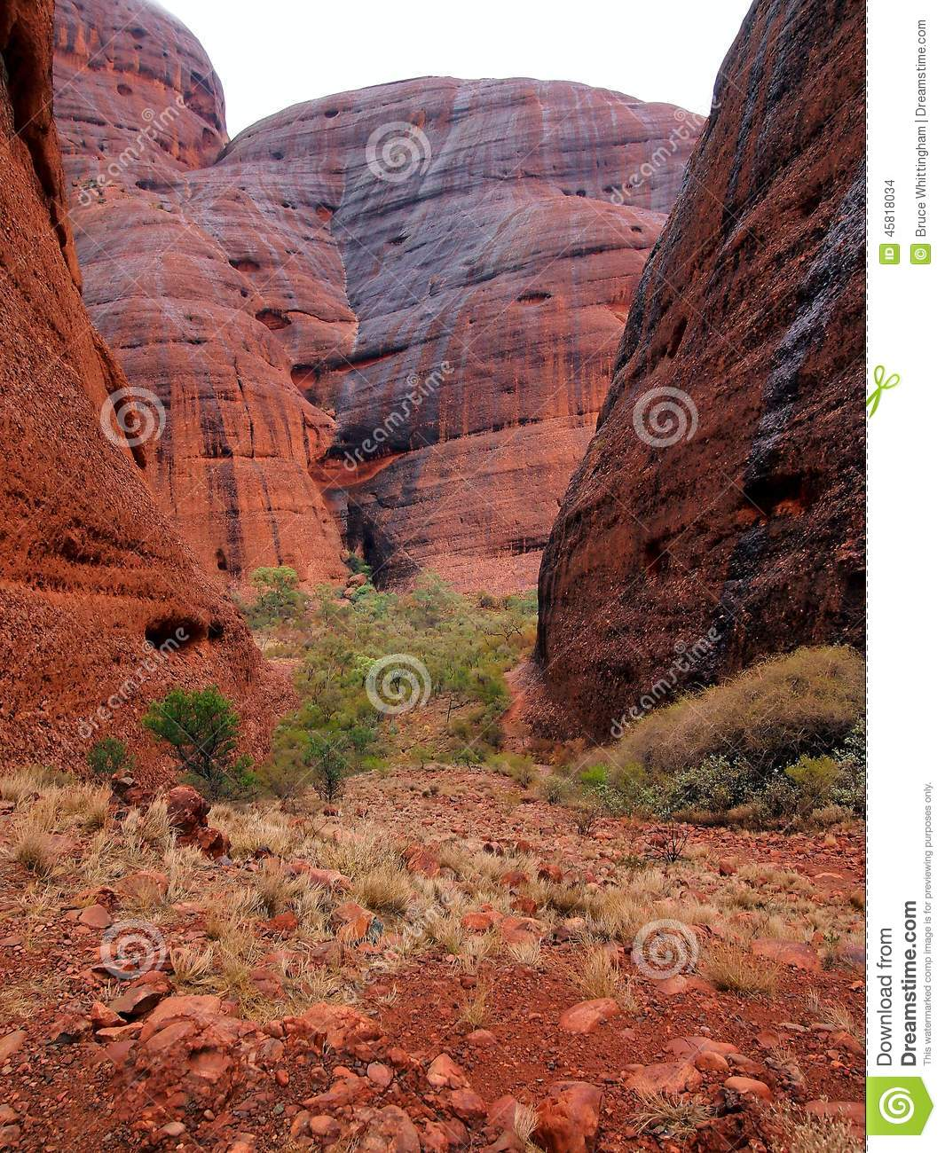 Kata Tjuta National Park, Australia Editorial Stock Image.