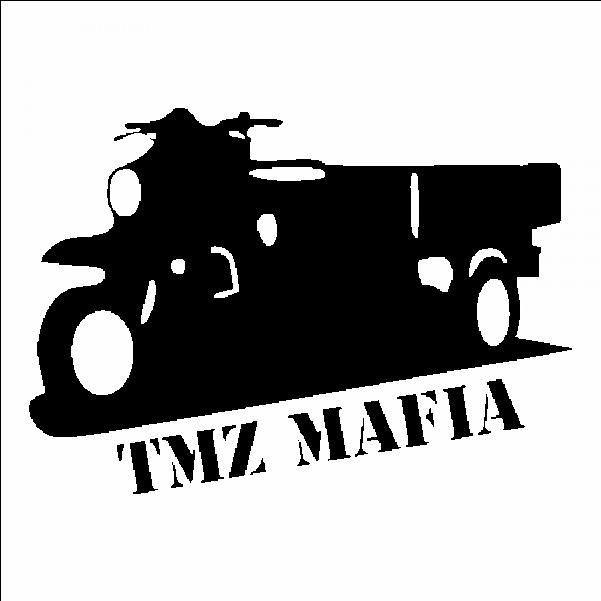 Download Tmz Logo Png.