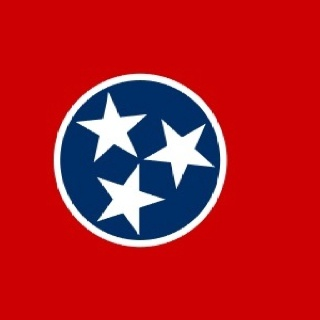 Tennessee State Flag3 star circle tattoo???.