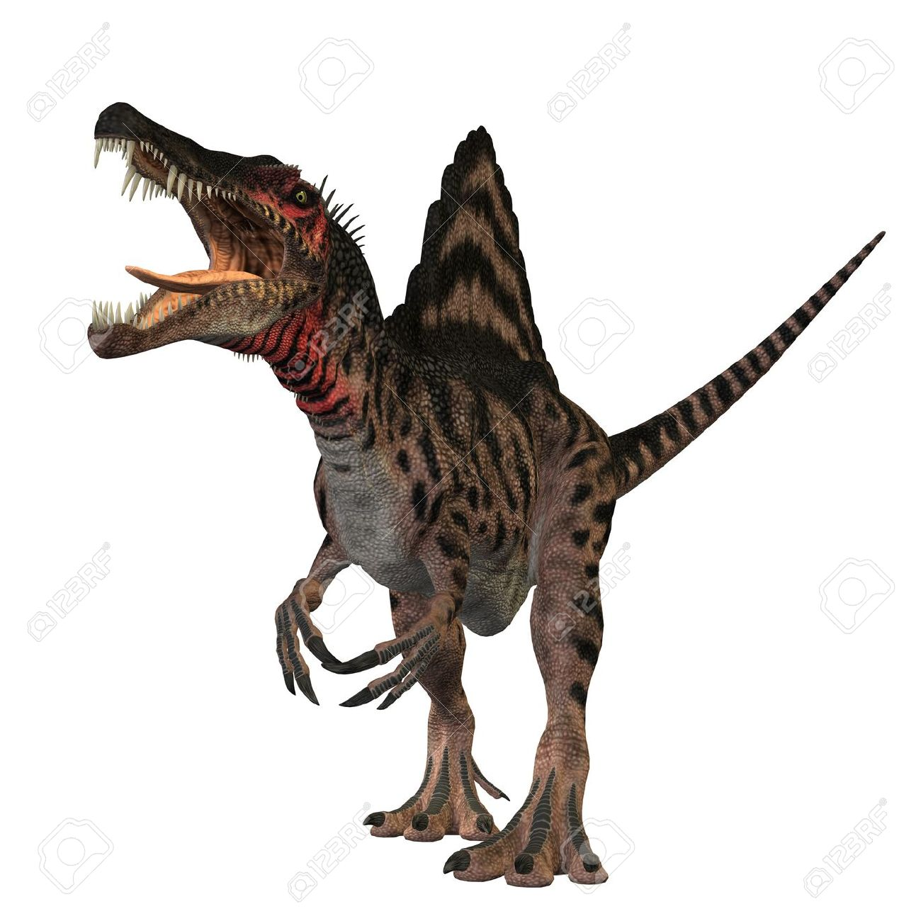 The Spinosaurus Dinosaur Was A Huge Carnivore Of The Cretaceous.