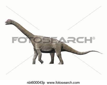 Stock Illustration of Aragosaurus ischiaticus, sauropod from the.