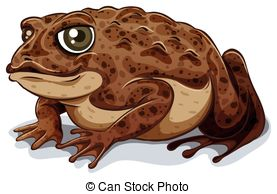 Toad Clipart and Stock Illustrations. 8,523 Toad vector EPS.