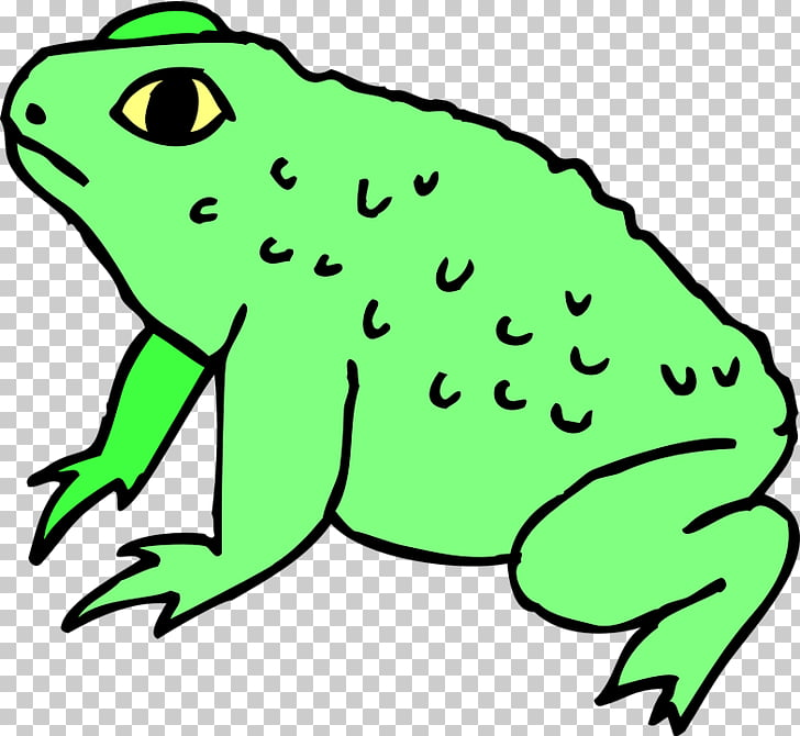 Frog Toad , frog PNG clipart.