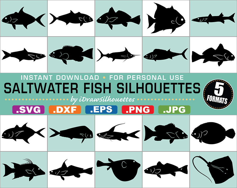 65 Saltwater Fish Silhouette Clip Art Images by iDrawSilhouettes.