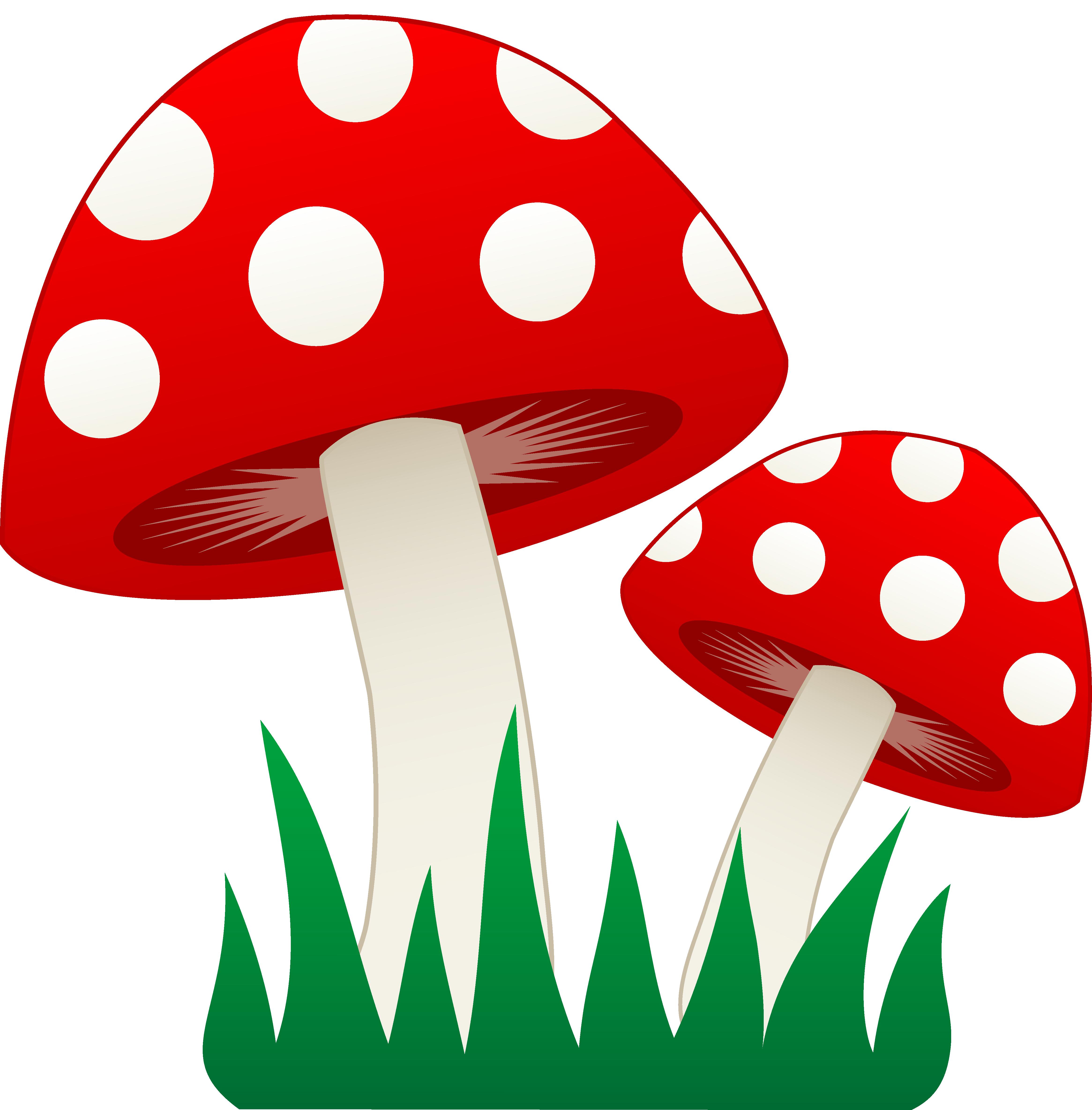 Mushrooms Clipart.