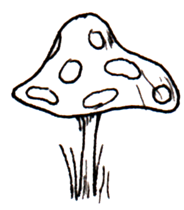 Toadstool Images.