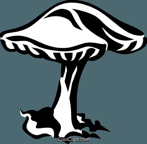 mushroom, toadstool Royalty Free Vector Clip Art.