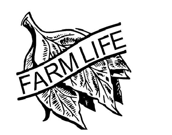 Tobacco Leaf Decal Farm Life by ThreeLittleFishes on Etsy.