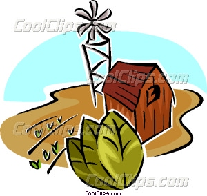 tobacco farm Vector Clip art.